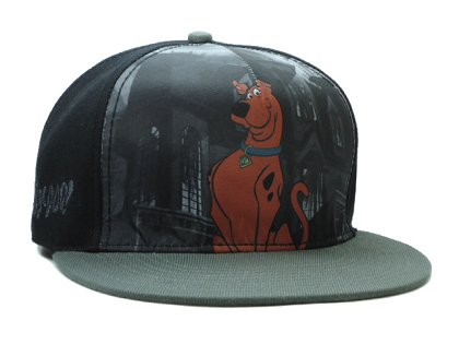Cartoon Snapback Hat SF-H (11)